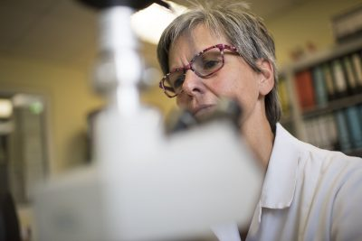 Das Foto zeigt eine Mitarbeiterin im Labor von Möller Pharma. Foto: Stadt Recklinghausen